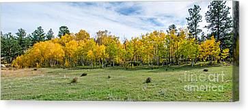 Colorado Fall Panorama Canvas Print