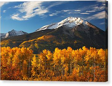 Scenic Drive Canvas Print - Colorado Gold by Darren  White