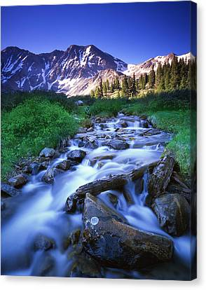 Colorado High Country Canvas Print by Ray Mathis