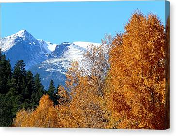 Colorado Mountains In Autumn Canvas Print