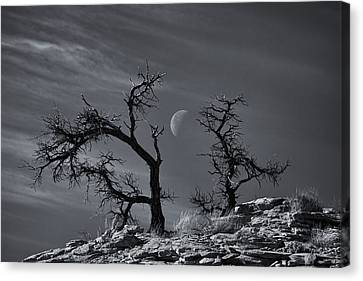 Colorado National Monument Moonrise Canvas Print by Darren  White
