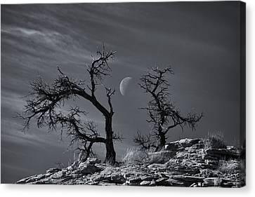 Colorado National Monument Moonrise Canvas Print