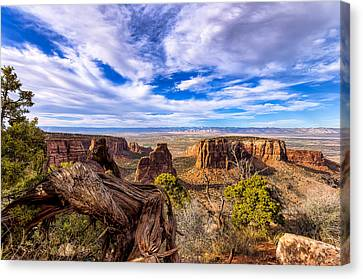 Colorado National Monument View Canvas Print by John McArthur