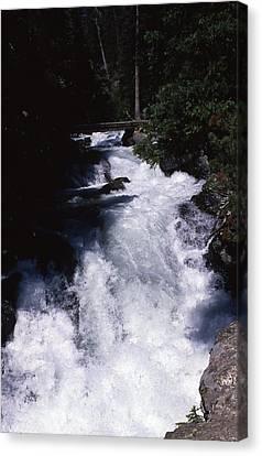 Colorado Rapids Canvas Print by Retro Images Archive