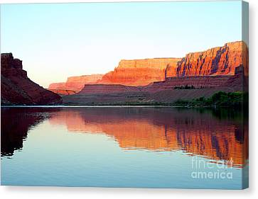 Colorado River At Dawn Canvas Print by Douglas Taylor