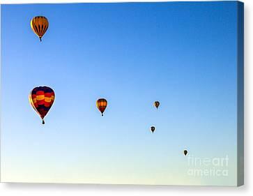 Colorado River Croosing Flight Canvas Print by Robert Bales