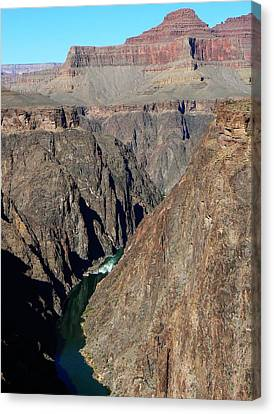 Canvas Print featuring the photograph Colorado River From Plateau Point by Scott Rackers