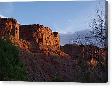 Colorado River Sunrise Canvas Print by Michael J Bauer