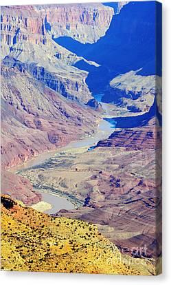 Colorado River Winding Through The Grand Canyon Canvas Print by Shawn O'Brien