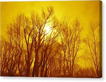 Canvas Print featuring the photograph Colorado Sky by Max Mullins