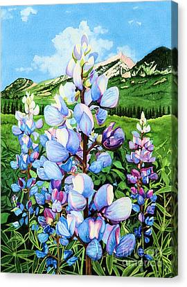 Canvas Print featuring the painting Colorado Summer Blues by Barbara Jewell