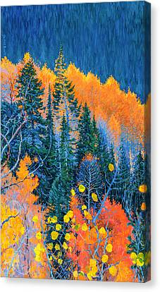 Colorado Trees At Fall Canvas Print