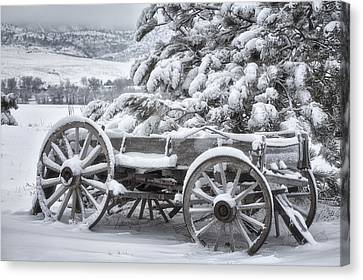 Winter Landscapes Canvas Print - Colorado Wagon by Darren  White