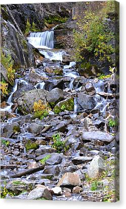 Colorado Waterfall Mountain Stream Canvas Print by Andrea Hazel Ihlefeld