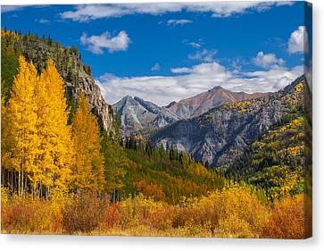Metalic Canvas Print - Colorado's Carpet Of Color by Darren  White
