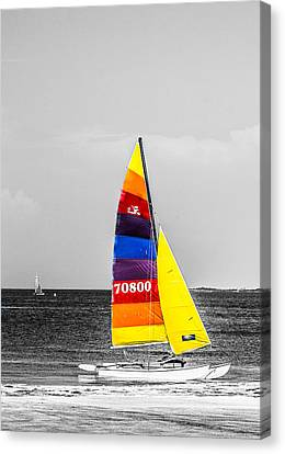 Colored Sails Canvas Print by Shelby  Young