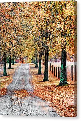Colorful Autumn Drive Canvas Print by Patrick M Lynch