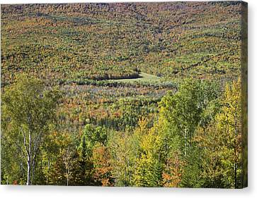 Maine Mountains Canvas Print - Colorful Autumn Landscape Of Weld Maine by Keith Webber Jr