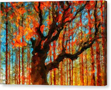 Scene Canvas Print - Colorful Autumn Trees In Forest  by Lanjee Chee