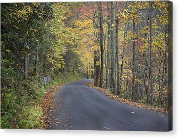 Canvas Print featuring the photograph Colorful Backroads by Robert Camp