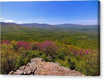 Colorful Blue Ridge Spring Canvas Print