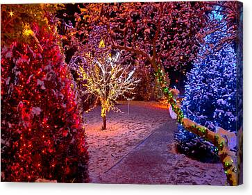 Colorful Christmas Lights On Trees Canvas Print by Brch Photography