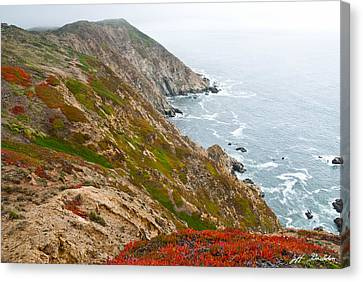 Colorful Cliffs At Point Reyes Canvas Print by Jeff Goulden