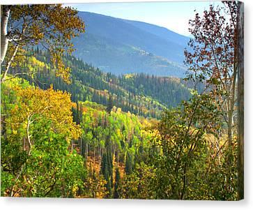 Colorful Colorado Canvas Print by Brian Harig
