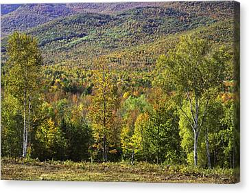 Maine Mountains Canvas Print - Colorful Fall Landscape From Center Hill In Weld Maine by Keith Webber Jr