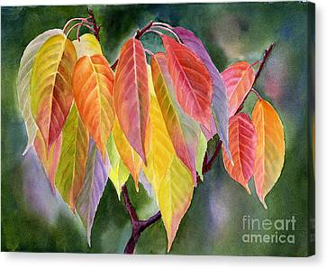 Colorful Fall Leaves With Background Canvas Print by Sharon Freeman