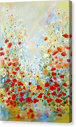 Colorful Field Of Poppies Canvas Print by Dorothy Maier