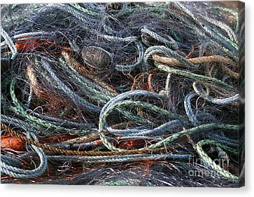 Colorful Fishing Nets Canvas Print by Patricia Hofmeester
