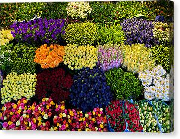 Colorful Flowers Background Canvas Print by Michal Bednarek