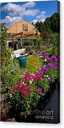 Colorful Greenhouse Canvas Print