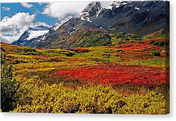 Canvas Print - Colorful Land - Alaska by Juergen Weiss