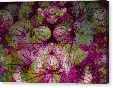 Colorful Leaf Canvas Print by Eiwy Ahlund