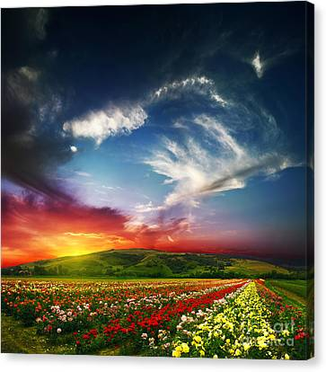 Colorful Nature Canvas Print by Boon Mee