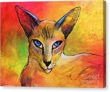 Colorful Oriental Shorthair Cat Painting Canvas Print by Svetlana Novikova
