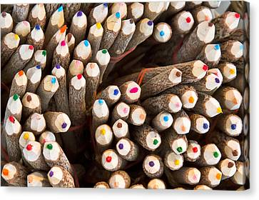Selection Canvas Print - Colorful Pencils by Tom Gowanlock