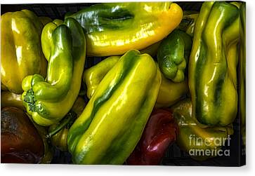 Colorful Peppers Canvas Print by Frank Bach