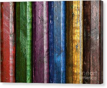 Colorful Poles  Canvas Print