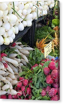 Colorful Produce Canvas Print by Mike  Dawson