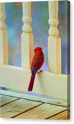 Colorful Redbird Canvas Print by Kenny Francis