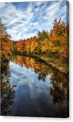 Colorful Reflection Canvas Print by Mark Papke