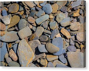 Colorful River Rocks Canvas Print by Photographic Arts And Design Studio