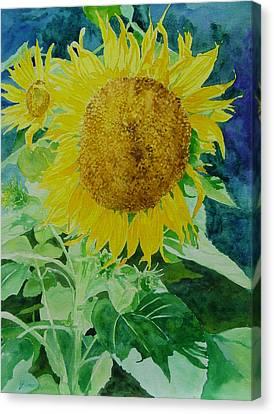 Colorful Sunflowers Watercolor Original Sunflower Art Canvas Print