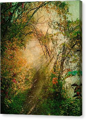 Colorful Sunlit Path Canvas Print by Brooke T Ryan