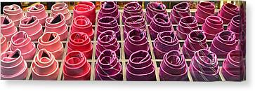 Colorful Ties Canvas Print by Dany Lison