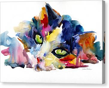Watercolor Pet Portraits Canvas Print - Colorful Tubby Cat Painting by Svetlana Novikova