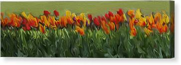 Colorful Tulips Canvas Print by Art Spectrum